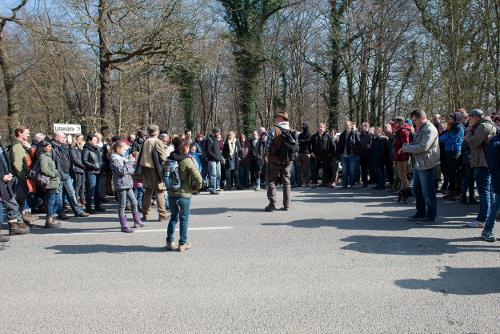 http://www.buirerfuerbuir.de/images/bilder/waldbesuch.jpg